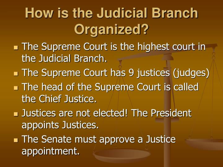 How is the Judicial Branch Organized?