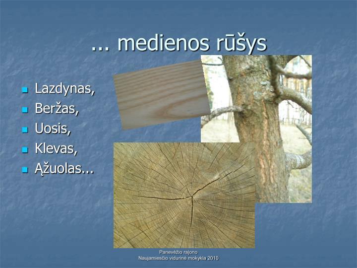 ... medienos rūšys