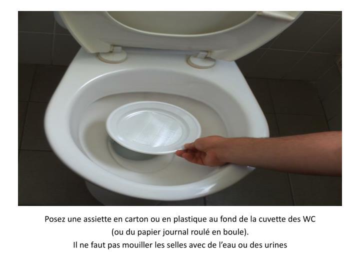Posez une assiette en carton ou en plastique au fond de la cuvette des WC