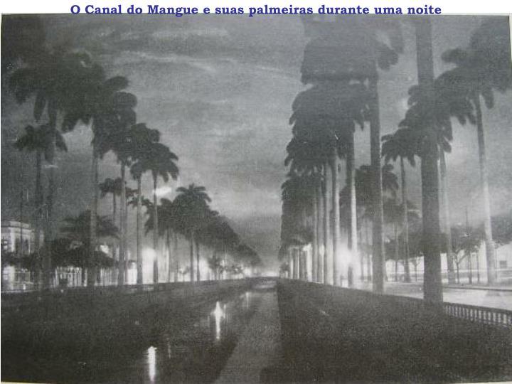 O Canal do Mangue e suas palmeiras durante uma noite