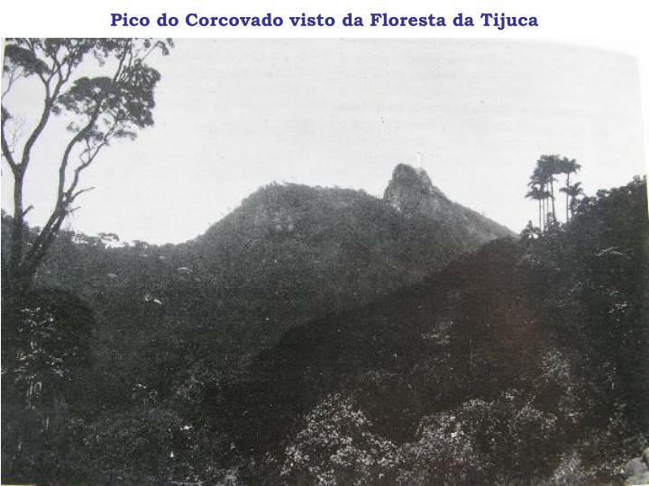 Pico do Corcovado visto da Floresta da Tijuca
