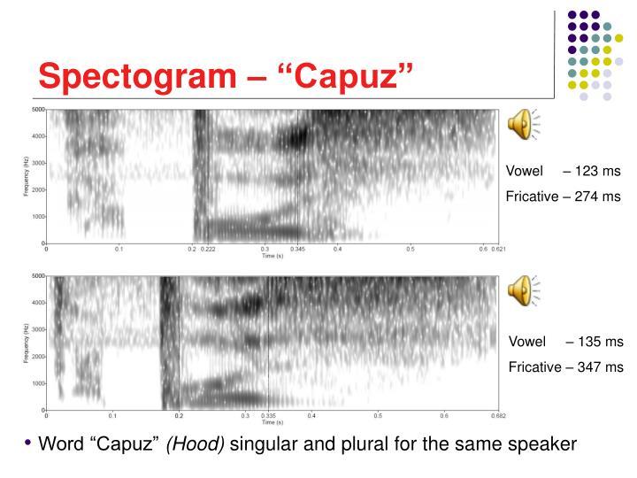 "Spectogram – ""Capuz"""