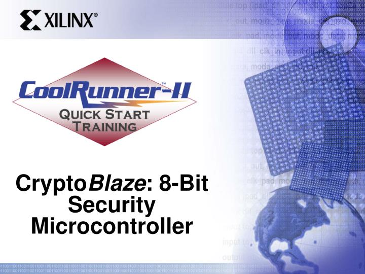 Crypto blaze 8 bit security microcontroller