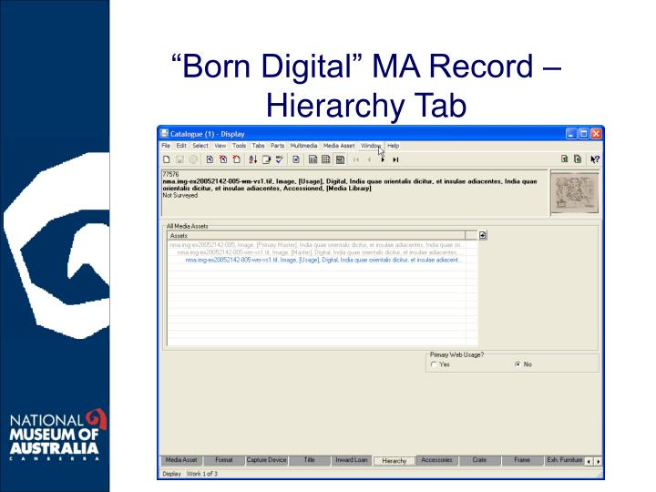"""Born Digital"" MA Record – Hierarchy Tab"