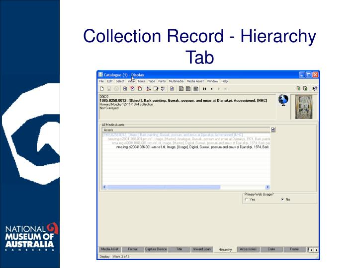 Collection Record - Hierarchy Tab