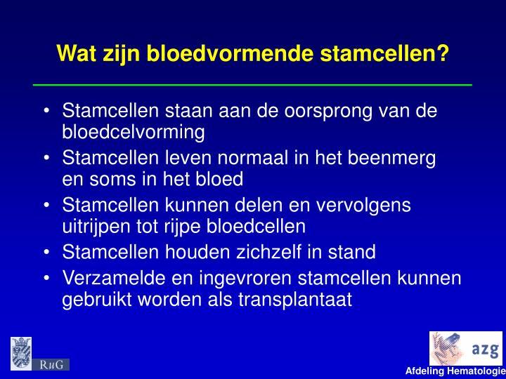 Wat zijn bloedvormende stamcellen?