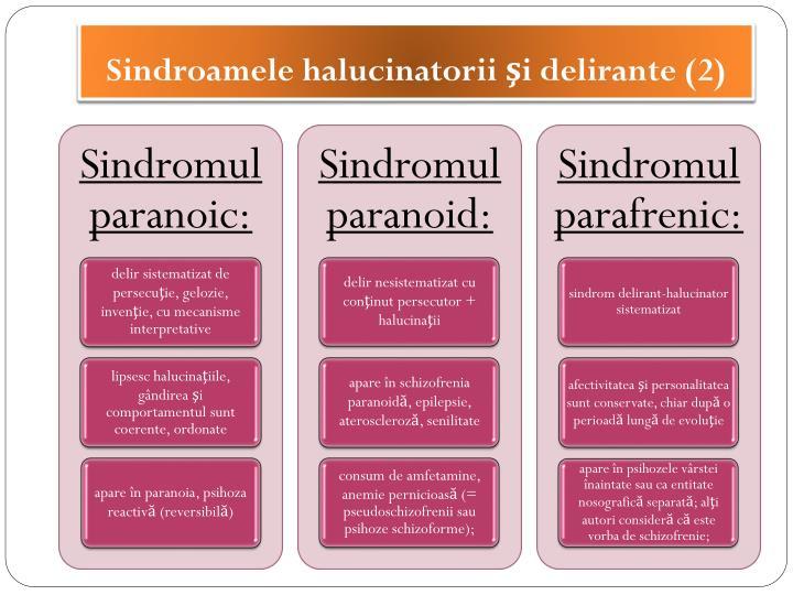 Sindroamele halucinatorii şi delirante (2)
