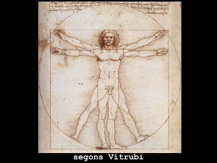 segons Vitrubi
