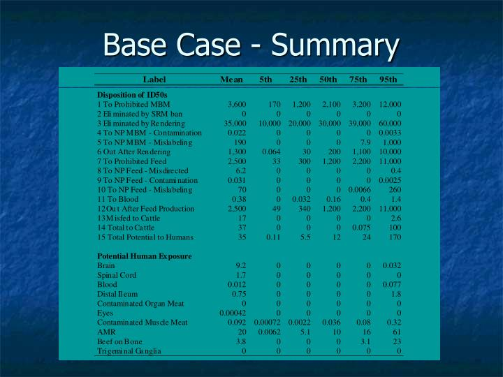 Base Case - Summary