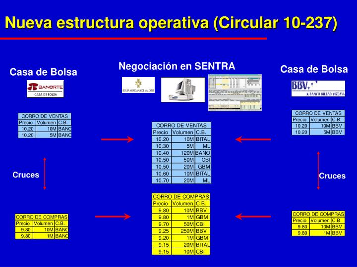 Nueva estructura operativa (Circular 10-237)