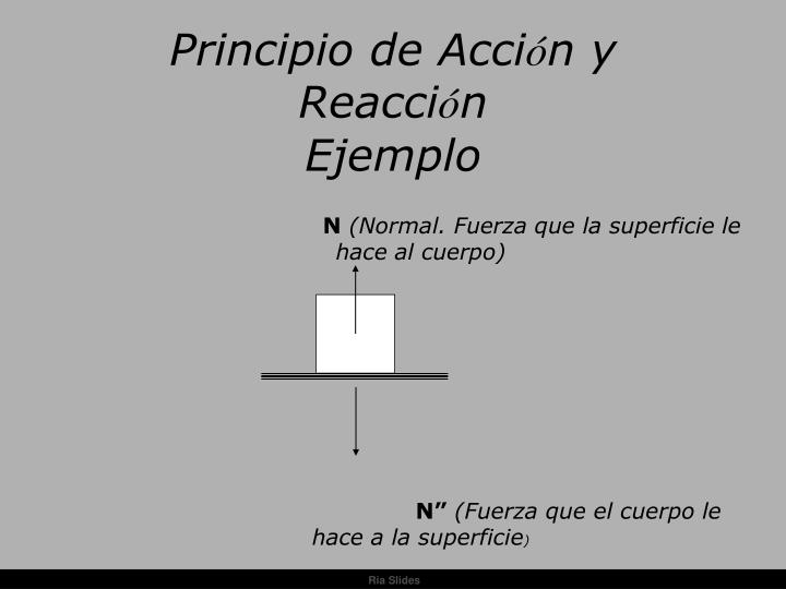 Principio de Acci