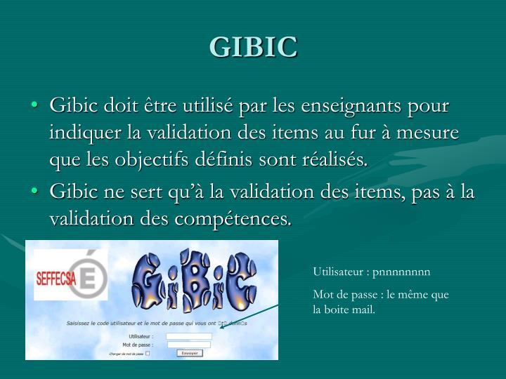 GIBIC