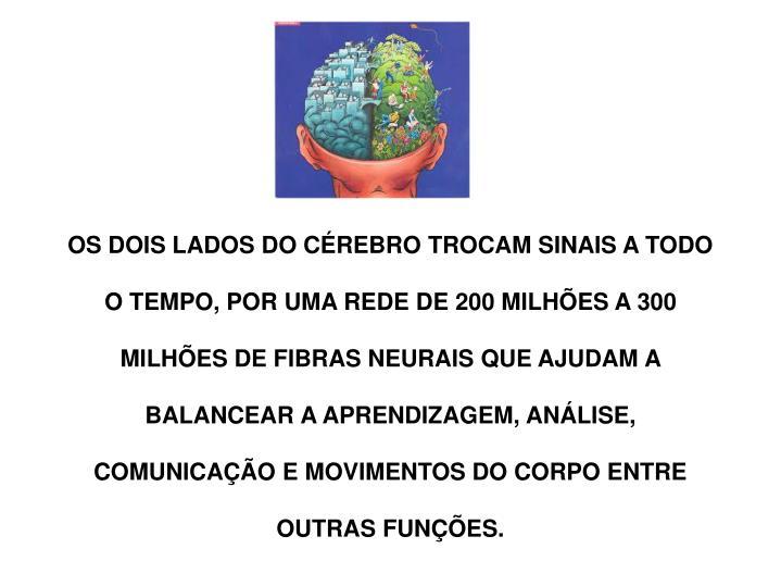 OS DOIS LADOS DO CÉREBRO TROCAM SINAIS A TODO