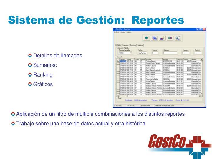 Sistema de Gestión:  Reportes