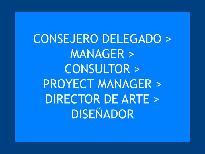CONSEJERO DELEGADO >