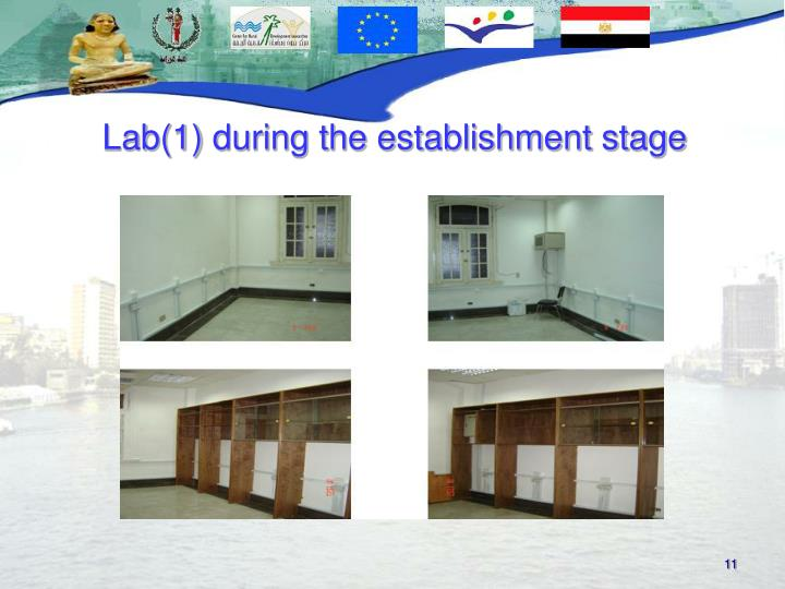 Lab(1) during the establishment stage