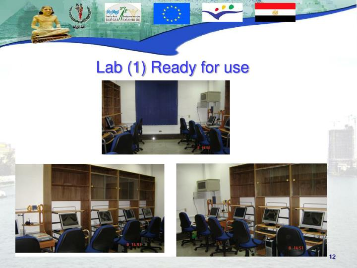 Lab (1) Ready for use