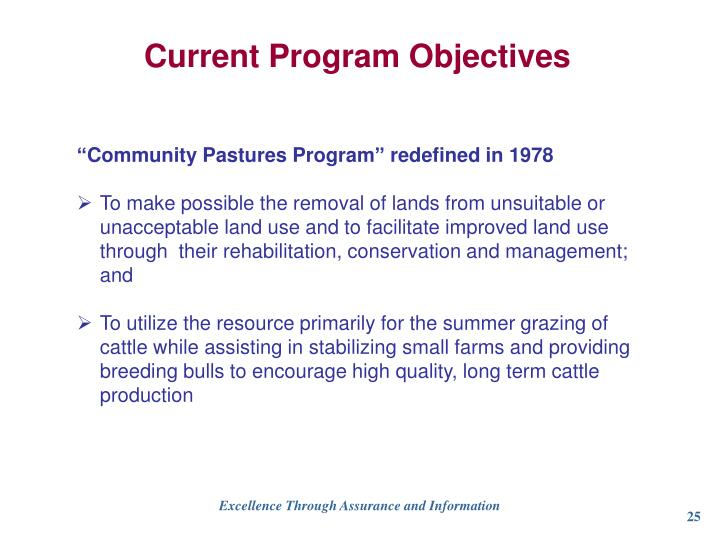 Current Program Objectives