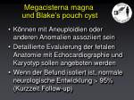 megacisterna magna und blake s pouch cyst