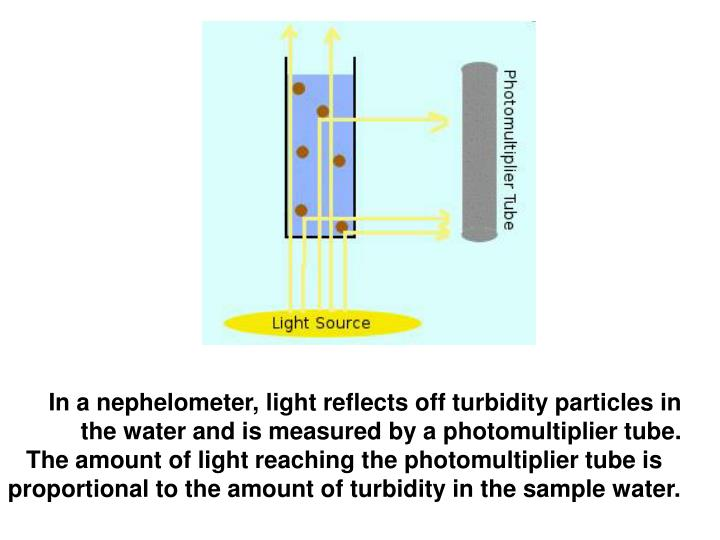 In a nephelometer, light reflects off turbidity particles in the water and is measured by a photomultiplier tube.