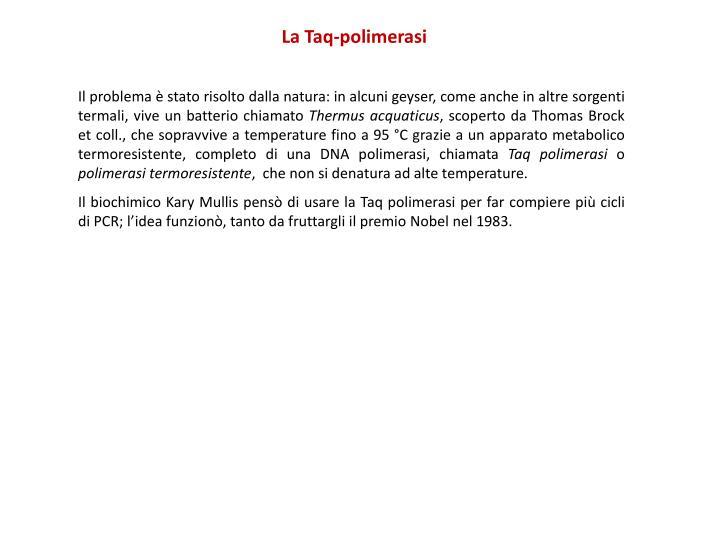 La Taq-polimerasi