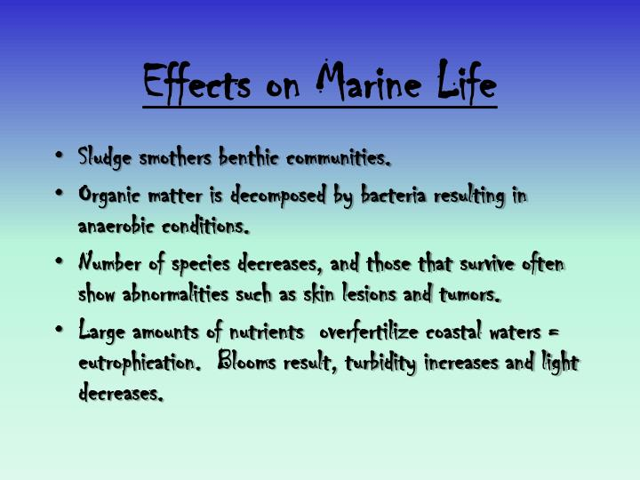 Effects on Marine Life