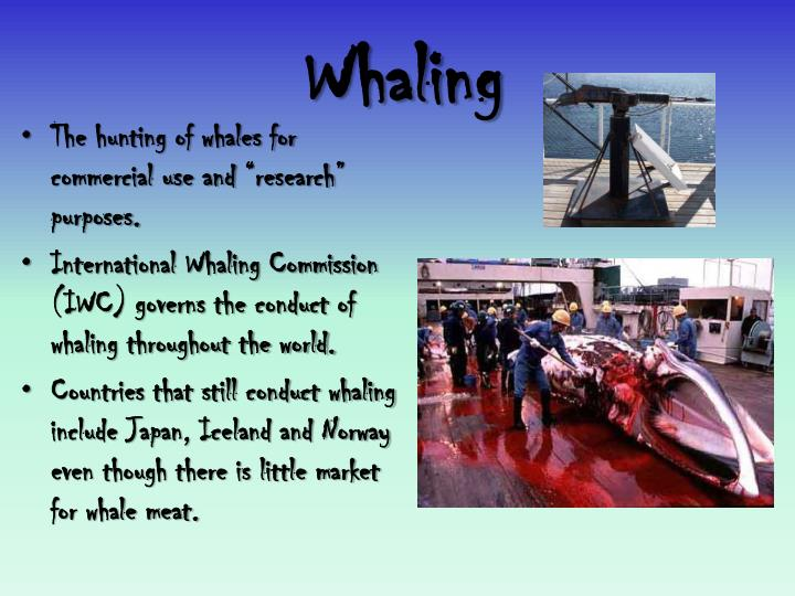Whaling