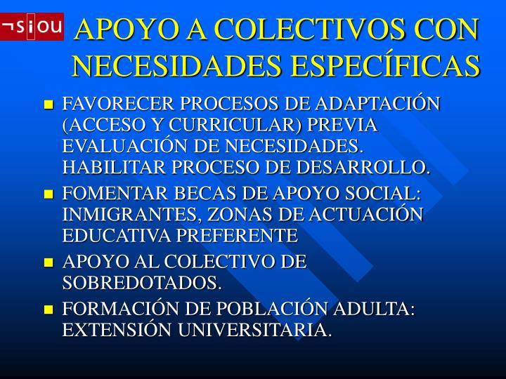 APOYO A COLECTIVOS CON NECESIDADES ESPECÍFICAS