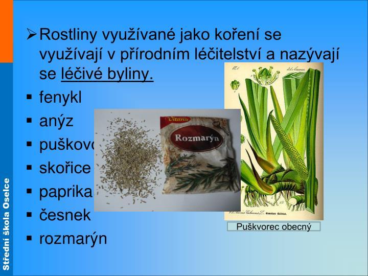 Rostliny využívané jako koření se využívají v přírodním léčitelství a nazývají se