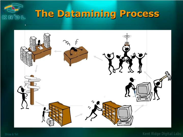 The Datamining Process