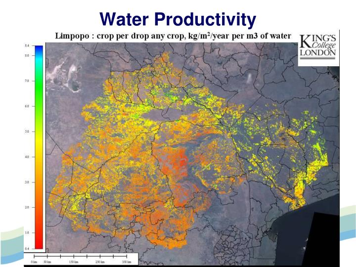 Water Productivity