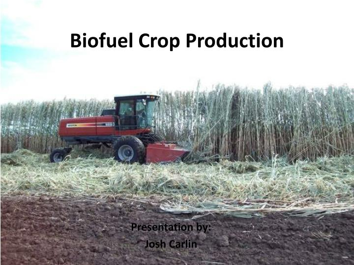 Biofuel crop production