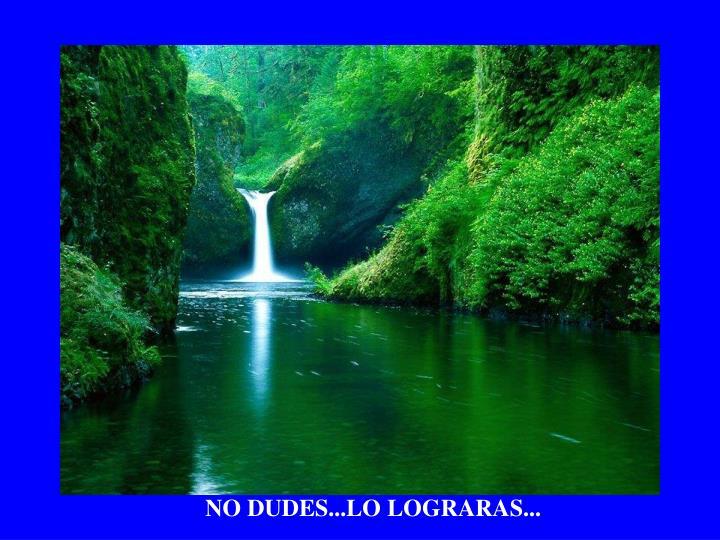 NO DUDES...LO LOGRARAS...