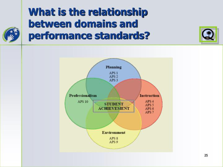 What is the relationship between domains and performance standards?