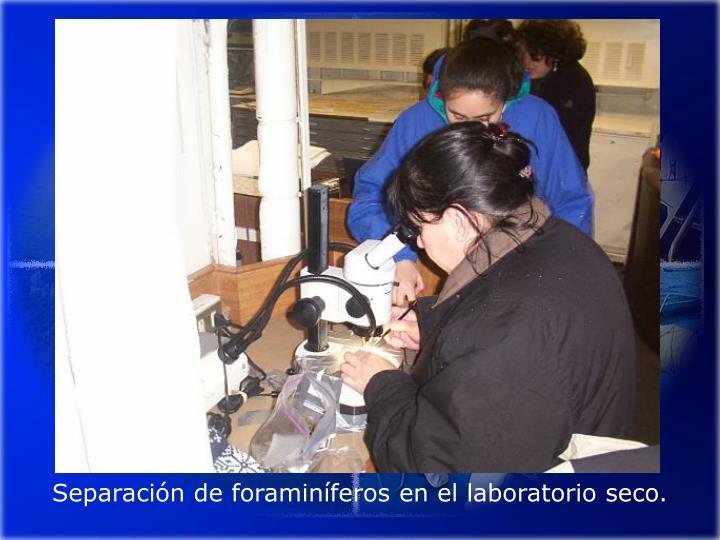 Separación de foraminíferos en el laboratorio seco.