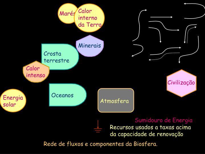 Rede de fluxos e componentes da Biosfera.