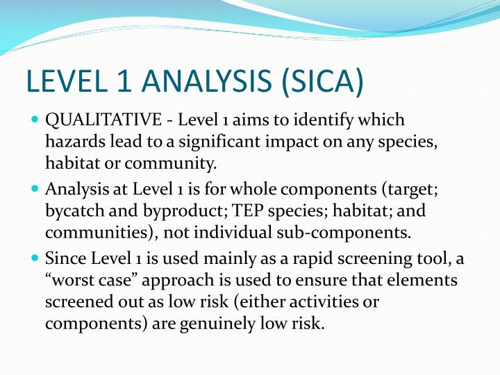 LEVEL 1 ANALYSIS (SICA)
