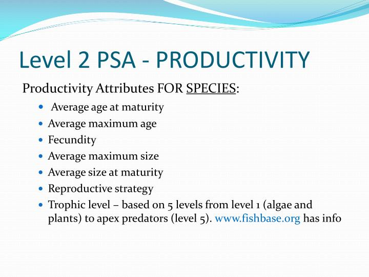 Level 2 PSA - PRODUCTIVITY