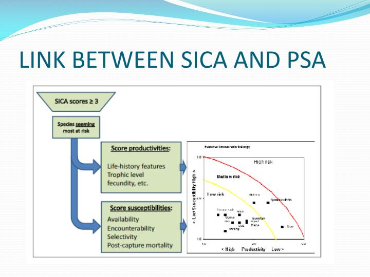 LINK BETWEEN SICA AND PSA