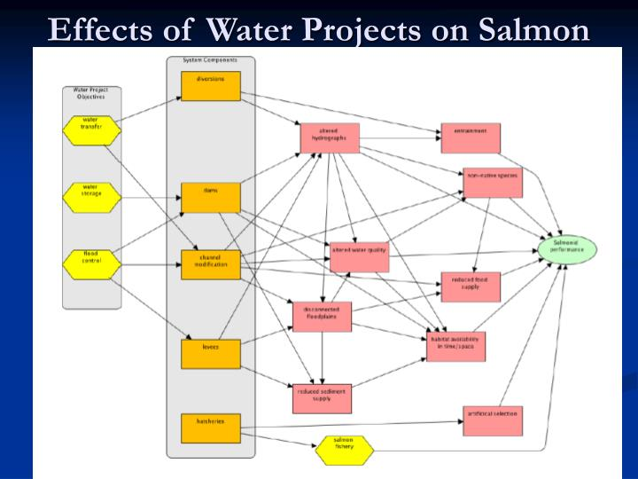 Effects of Water Projects on Salmon