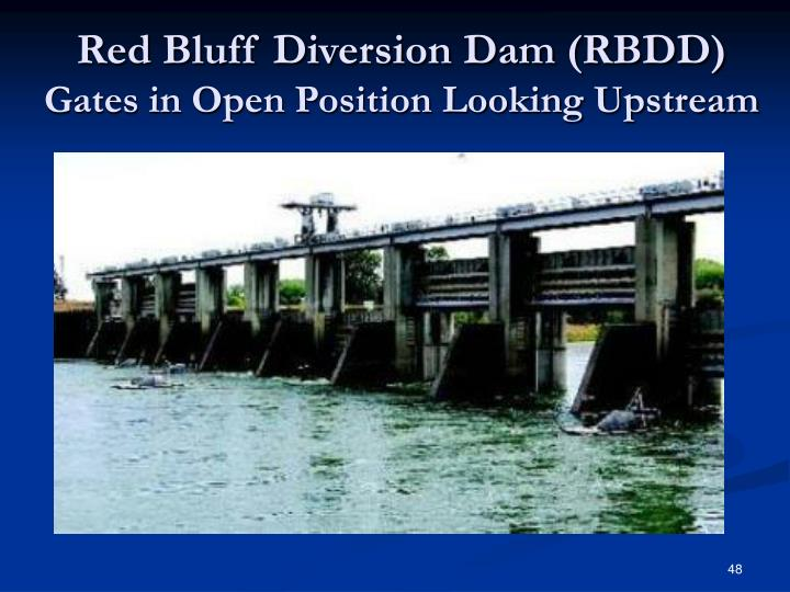 Red Bluff Diversion Dam (RBDD)