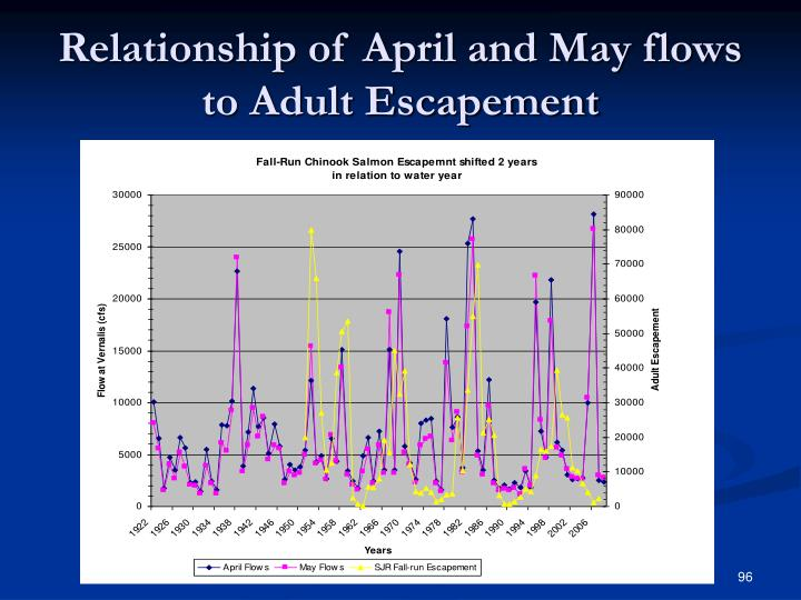 Relationship of April and May flows to Adult Escapement