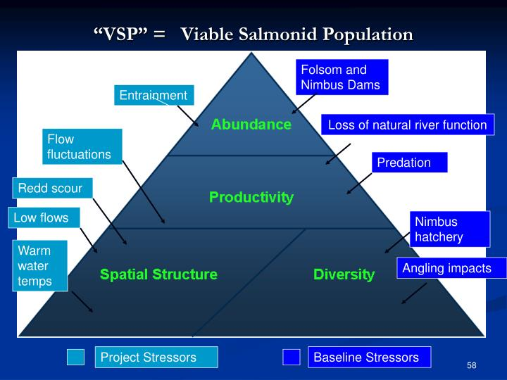 """VSP"" =   Viable Salmonid Population"