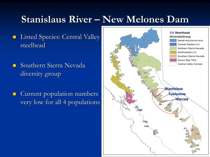 Stanislaus River – New Melones Dam