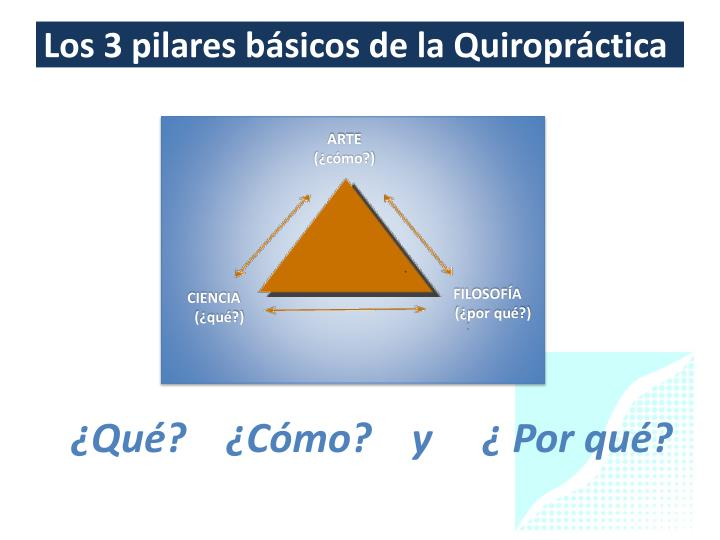 Los 3 pilares básicos de la Quiropráctica