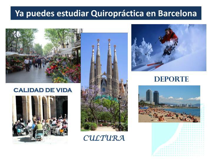 Ya puedes estudiar Quiropráctica en Barcelona