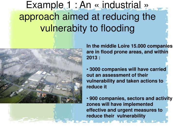 Example 1 : An « industrial » approach aimed at reducing the vulnerabity to flooding