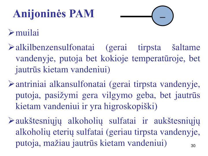 Anijoninės PAM