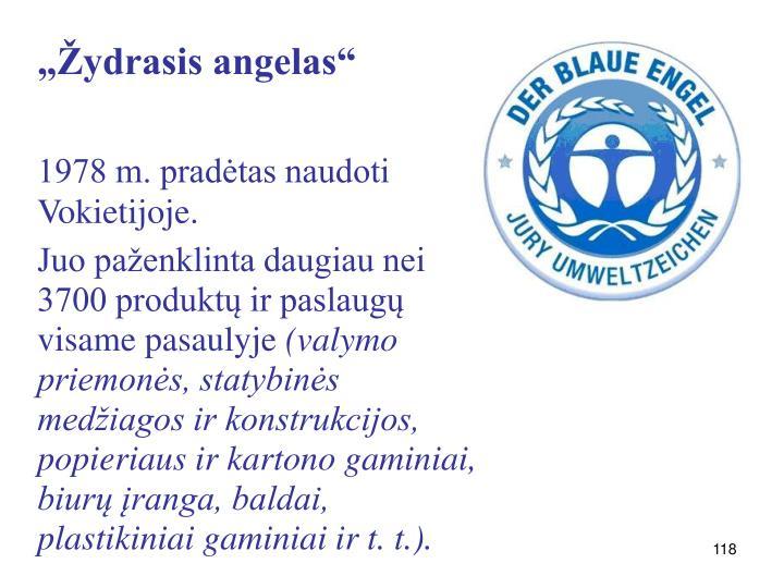 """""""Žydrasis angelas"""""""