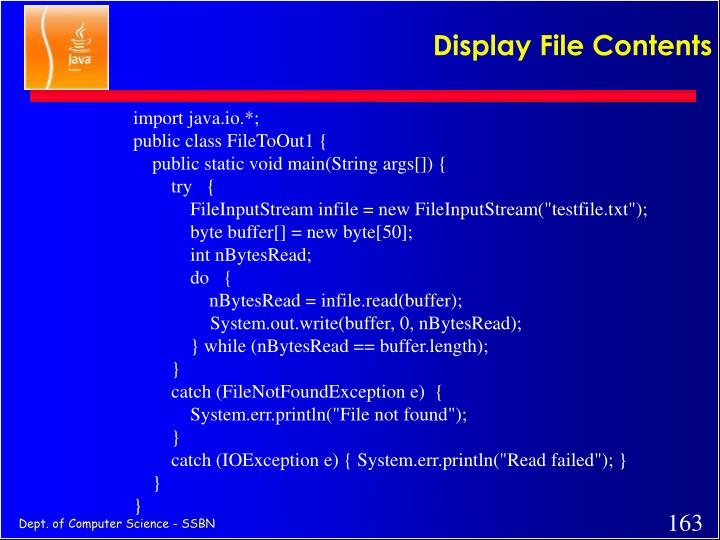 Display File Contents